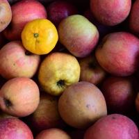 mandarijn in appels