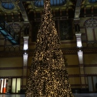 Kerstboom stationshal
