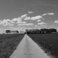 Weg naar de horizon